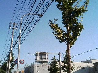 image/satoland-2005-10-06T15:05:21-1.JPG